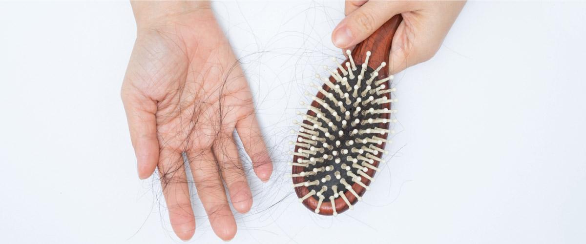 با رایجترین مشکلات مو مانند ریزش مو و آسیب مو بیشتر آشنا شوید